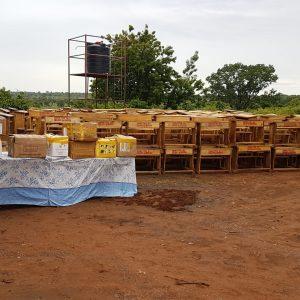 Braveaurora donates furniture and textbooks to schools